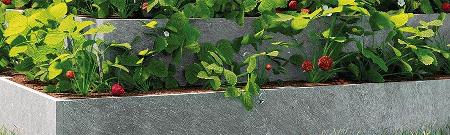 Erdbeerbeet Kräuterbeet
